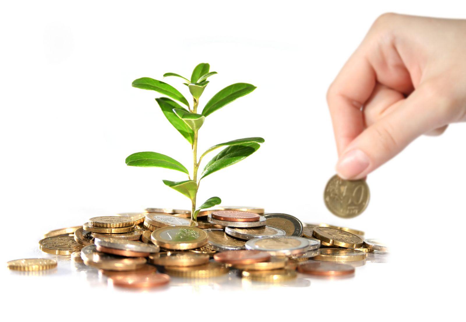 Principios Básicos para Conseguir y Mantener una Óptima Salud Financiera
