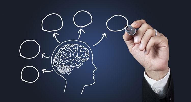Neurociencias Aplicadas al Desarrollo de Competencias de Liderazgo y Coaching