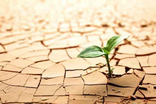 Resiliencia para superar situaciones adversas